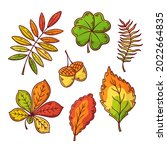 autumn leaves collection....   Shutterstock .eps vector #2022664835
