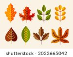 autumn leaves collection....   Shutterstock .eps vector #2022665042
