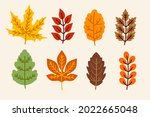 autumn leaves collection....   Shutterstock .eps vector #2022665048