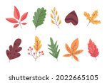 autumn leaves collection....   Shutterstock .eps vector #2022665105