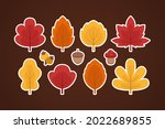 autumn leaves collection....   Shutterstock .eps vector #2022689855
