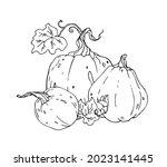 vector pumpkin on white...   Shutterstock .eps vector #2023141445
