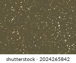 ink golden blots grunge urban... | Shutterstock . vector #2024265842