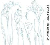 set of flowers painted. vector... | Shutterstock .eps vector #202516156