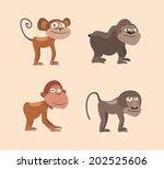 four kind of monkeys in vector | Shutterstock .eps vector #202525606