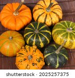 different squash in different...   Shutterstock . vector #2025257375
