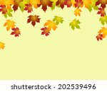 fall copyspace indicating leafy ... | Shutterstock . vector #202539496