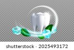 tooth brush aroma mint leaf and ... | Shutterstock .eps vector #2025493172