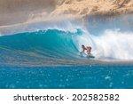 surfing a wave. lombok island.... | Shutterstock . vector #202582582