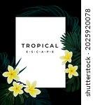 summer tropical vector design... | Shutterstock .eps vector #2025920078