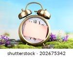 summertime. old clock on moss   Shutterstock . vector #202675342
