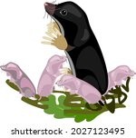 cartoon black mole with newborn ...   Shutterstock .eps vector #2027123495