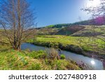 Small photo of Photographs of a landscape, stream, Spring, Gully is a relief created by running water, rapidly collapsing into the soil, usually on a hillside. Gullies resemble large ditches or small valleys