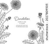 hand drawn dandelion floral... | Shutterstock .eps vector #2027809505