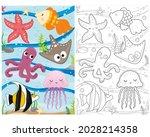 vector coloring book marine... | Shutterstock .eps vector #2028214358