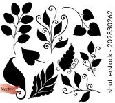 Vector Set Of Leaves. Stencils...