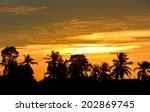 silhouette tree sunset | Shutterstock . vector #202869745