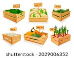fresh vegetables in wooden... | Shutterstock .eps vector #2029006352