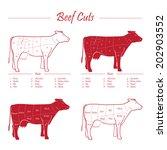 scheme american cuts of beef  ...   Shutterstock .eps vector #202903552