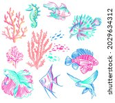 exotic fishes and corals. a set ...   Shutterstock .eps vector #2029634312