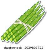 asparagus sticker on white... | Shutterstock .eps vector #2029803722