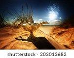 Magic Lamp In The Desert From...
