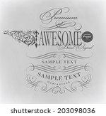 calligraphic design elements    ... | Shutterstock . vector #203098036