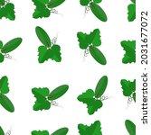 fresh cucumber seamless pattern....   Shutterstock .eps vector #2031677072
