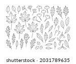hand drawn set of autumn leaves....   Shutterstock .eps vector #2031789635