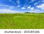 summer landscape | Shutterstock . vector #203185186