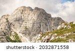 Steinbocks On The Mount...