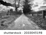 Small photo of A eerily empty long road leads down to what looks like a sunnier predicament ahead