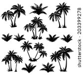 Stock vector set tropical palm trees with leaves mature and young plants black silhouettes isolated on white 203399278