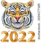 colorful orange smiling tiger...   Shutterstock . vector #2034177185