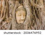 Buddha Head Embedded In A...