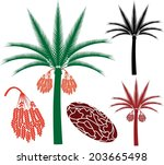 Palm Tree. Abstract Date Palm...