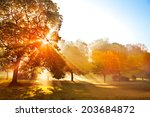 Sunset In Autumn Park. Autumn...