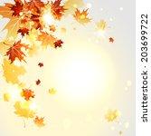 falling maple leaves. autumn... | Shutterstock .eps vector #203699722