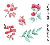 hand painted watercolor...   Shutterstock .eps vector #2038238252