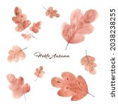 set of fall leaves watercolor...   Shutterstock .eps vector #2038238255