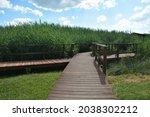 Wooden bridge and walkway around the lake in Kaposvar, Hungary