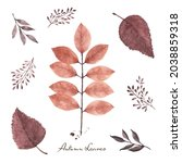 set of fall leaves watercolor...   Shutterstock .eps vector #2038859318