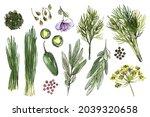 sketch of food vegetables and... | Shutterstock . vector #2039320658