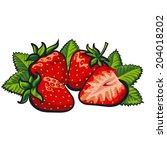 strawberry | Shutterstock .eps vector #204018202