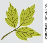 simplicity maple leaf freehand... | Shutterstock .eps vector #2040378728