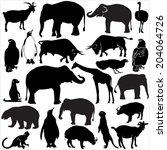 zoo animals collection   vector ...   Shutterstock .eps vector #204064726