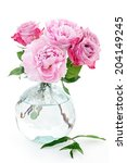 floral composition with a pink... | Shutterstock . vector #204149245