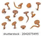 cartoon isolated rusty bent...   Shutterstock .eps vector #2042075495