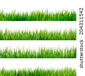 grass isolated on white. and... | Shutterstock .eps vector #204311542