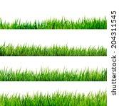 grass isolated on white. and... | Shutterstock .eps vector #204311545